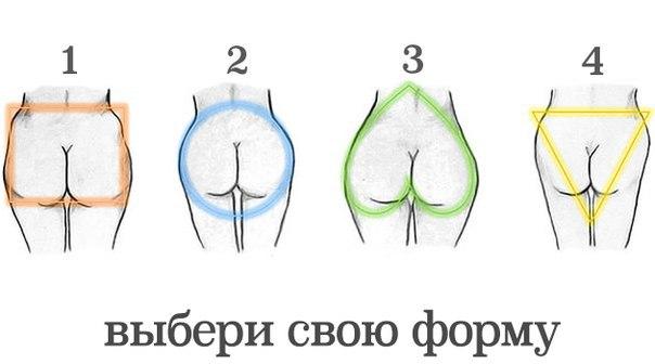 форма попы